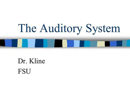 The Auditory System Dr. Kline FSU. What is the physical stimulus for audition? Sound- vibrations of the molecules in a medium like air. The hearing spectrum.