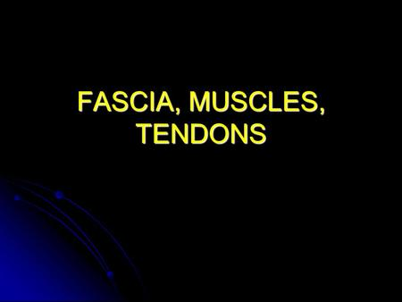 FASCIA, MUSCLES, TENDONS. Skeletal Muscle Structure Origin: Origin: Proximal attachment Insertion: Insertion: Distal attachment Tendons: Tendons:Peritendineum.