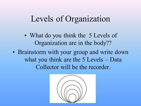 Levels of Organization What do you think the 5 Levels of Organization are in the body?? Brainstorm with your group and write down what you think are the.