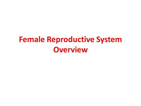 Female Reproductive System Overview. Ovaries Responsible for oogenesis: the production of female gametes (ova) Also responsible for the secretion of female.