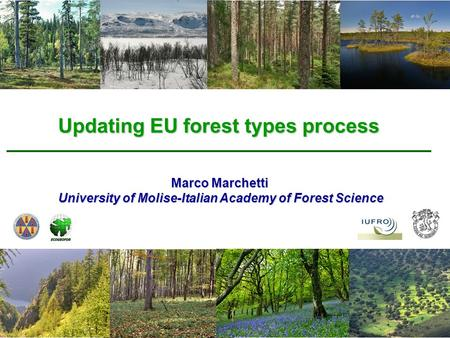 Updating EU forest types process Marco Marchetti University of Molise-Italian Academy of Forest Science.