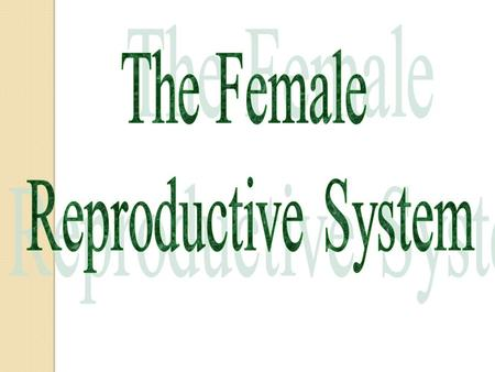 What is the purpose of the female reproductive system? Purpose? Making an egg Getting sperm and egg together Protecting and nurturing the growing embryo.