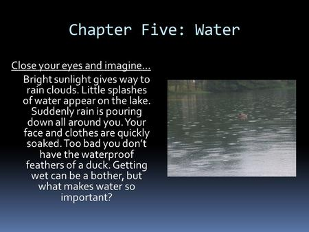 Chapter Five: Water Close your eyes and imagine… Bright sunlight gives way to rain clouds. Little splashes of water appear on the lake. Suddenly rain is.