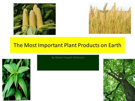 The Most Important Plant Products on Earth By Bakari Hargett-Robinson.