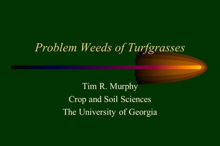 Problem Weeds of Turfgrasses Tim R. Murphy Crop and Soil Sciences The University of Georgia.