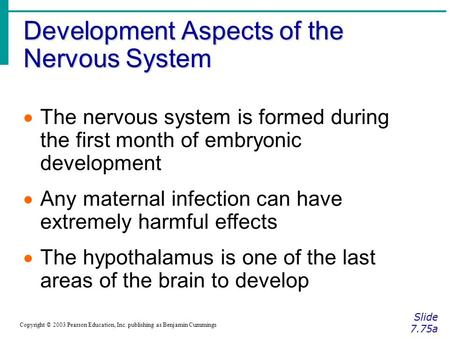 Development Aspects of the Nervous System Slide 7.75a Copyright © 2003 Pearson Education, Inc. publishing as Benjamin Cummings  The nervous system is.