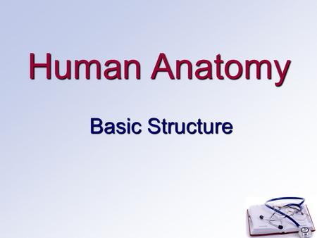 Human Anatomy Basic Structure. Anatomical Terms Anatomy: study of the body structure and formAnatomy: study of the body structure and form Physiology: