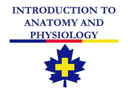 INTRODUCTION TO ANATOMY AND PHYSIOLOGY. 2 Introduction  Your responsibility is to assist an injured or sick person  A basic understanding of human anatomy.