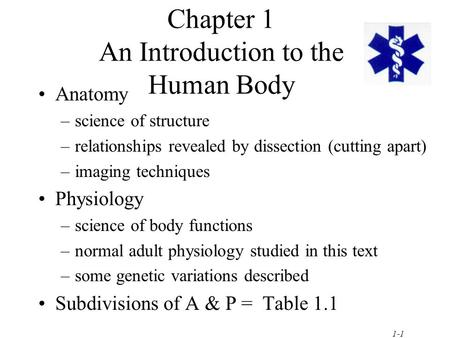 1-1 Chapter 1 An Introduction to the Human Body Anatomy –science of structure –relationships revealed by dissection (cutting apart) –imaging techniques.