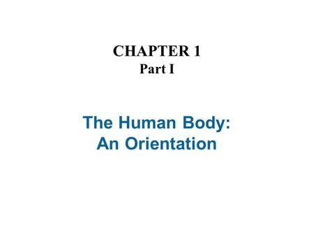 The Human Body: An Orientation CHAPTER 1 Part I. The Human Body—An Orientation Anatomy – Study of the structure and shape of the body and its parts Physiology.
