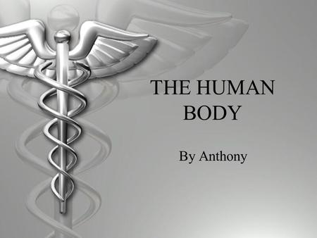 THE HUMAN BODY By Anthony. Digestive System  The digestive system helps flush out materials out of the body that could not be digested.