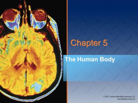 Chapter 5 The Human Body. National EMS Education Standard Competencies  <strong>Anatomy</strong> <strong>and</strong> <strong>Physiology</strong>  Applies fundamental knowledge of the <strong>anatomy</strong> <strong>and</strong> function.