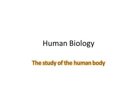 Human Biology. Bellringer What is the basic unit of structure and function in a living thing? Organize the following from smallest to largest: $1, 50¢,
