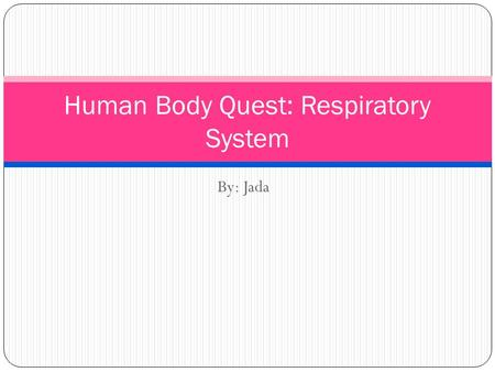 By: Jada Human Body Quest: Respiratory System. Respiratory System Breathing moves chest to bring air into and remove wastes from the lungs. Cellular respiration.