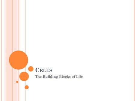 C ELLS The Building Blocks of Life. C ELLS Cells are the smallest unit of living matter. All living things including plants and animals are made up of.