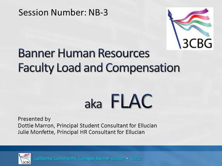 Banner Human Resources Faculty Load and Compensation aka FLAC
