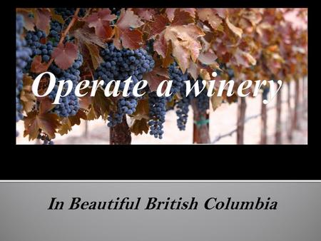 In Beautiful British Columbia. Winery Project With an minimum investment of $300,000 you can manage and own your own winery in the stunning Okanagan region.