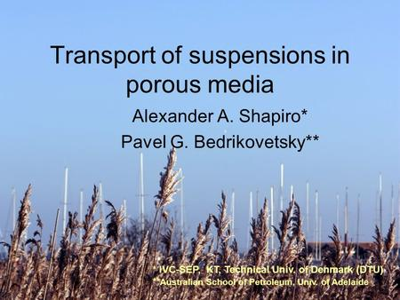1 Transport of suspensions in porous media Alexander A. Shapiro* Pavel G. Bedrikovetsky** * IVC-SEP, KT, Technical Univ. of Denmark (DTU) ** Australian.