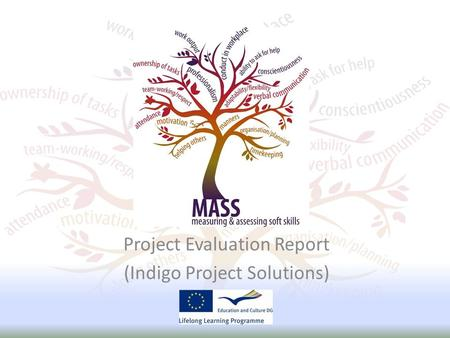 Project Evaluation Report (Indigo Project Solutions)