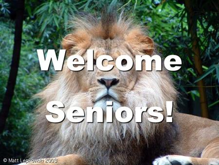 Welcome Seniors!. Planning Your Future Work Force Armed Forces Trade Program College/University.