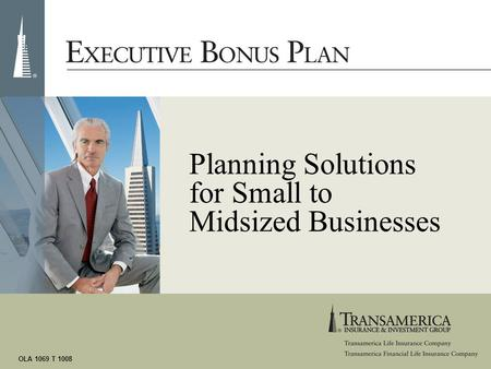 OLA 1069 T 1008 Planning Solutions for Small to Midsized Businesses.