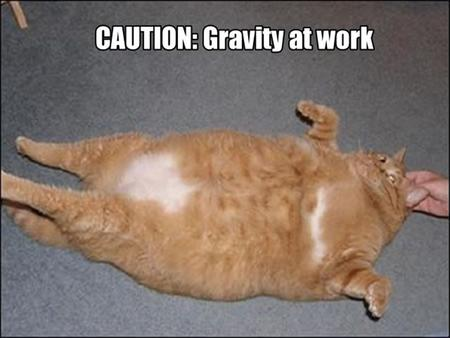 What is Gravity? Write down anything you may know about gravity. Any examples of gravity Where you may find it or not find it!