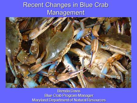 Image or Graphic Recent Changes in Blue Crab Management Brenda Davis Blue Crab Program Manager Maryland Department of Natural Resources.