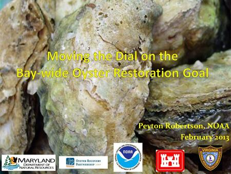 Peyton Robertson, NOAA February 2013. Goal: Restore oyster populations in 20 tributaries by 2025 Tributary Selection: MD & VA Oyster Restoration Interagency.