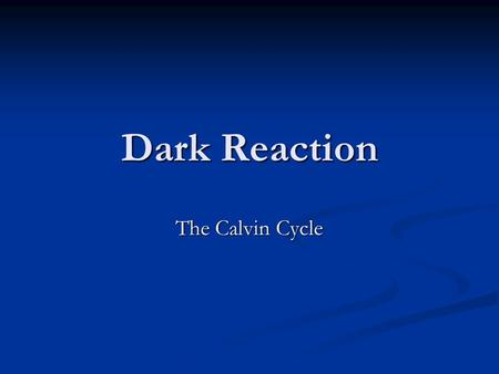 Dark Reaction The Calvin Cycle.