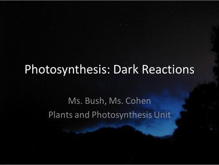 Photosynthesis: Dark Reactions Ms. Bush, Ms. Cohen Plants and Photosynthesis Unit.