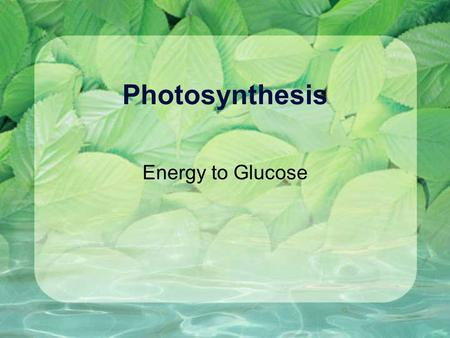 Photosynthesis Energy to Glucose.