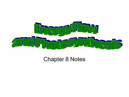 Chapter 8 Notes. Energy Flows Between Living Things Photosynthesis- process by which light energy is converted to chemical energy. Autotrophs-organisms.
