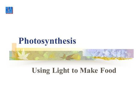 Photosynthesis Using Light to Make Food. Photosynthesis H2OH2OH2OH2O CO 2 O2O2O2O2 C 6 H 12 O 6 Light Reaction Dark Reaction Light is Adsorbed ByChlorophyll.