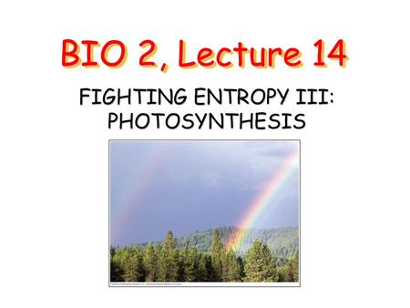 BIO 2, Lecture 14 FIGHTING ENTROPY III: PHOTOSYNTHESIS.