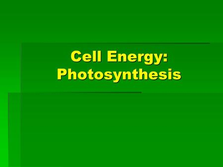 Cell Energy: Photosynthesis. Where Does Energy Come From?  Autotrophs: Use light energy from the sun to produce food necessary to give them energy. 