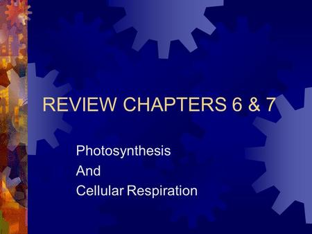 REVIEW CHAPTERS 6 & 7 Photosynthesis And Cellular Respiration.