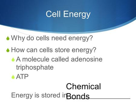 Cell Energy  Why do cells need energy?  How can cells store energy?  A molecule called adenosine triphosphate  ATP Energy is stored in ________________.