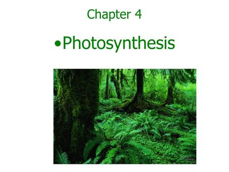 Chapter 4 Photosynthesis. –Photosynthesis is the process by which certain organisms use light energy To make sugar and oxygen gas from carbon dioxide.