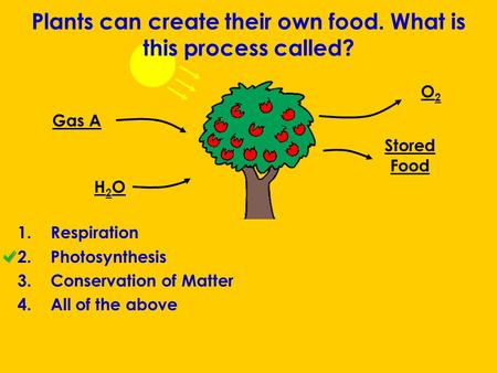 Plants can create their own food. What is this process called? 1.Respiration 2.Photosynthesis 3.Conservation of Matter 4.All of the above Gas A H2OH2O.