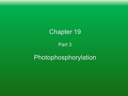 Chapter 19 Part 3 Photophosphorylation. Learning Goals: To Know 1. How energy of sunlight creates charge separation in the photosynthetic reaction complex.