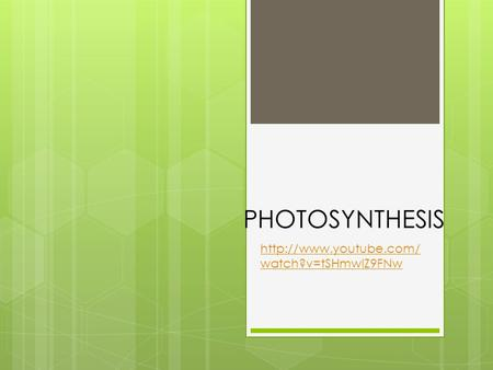 PHOTOSYNTHESIS http://www.youtube.com/watch?v=tSHmwIZ9FNw.