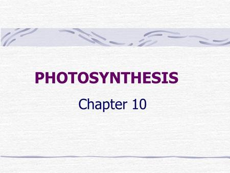 "PHOTOSYNTHESIS Chapter 10. BASIC VOCABULARY Autotrophs – producers; make their own ""food"" Heterotrophs – consumers; cannot make own food."