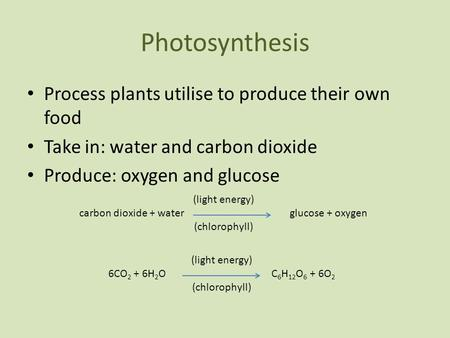Photosynthesis Process plants utilise to produce their own food Take in: water and carbon dioxide Produce: oxygen and glucose (light energy) carbon dioxide.