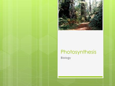 Photosynthesis Biology. 1.Explain why photosynthesis is so important to energy and material flow for life on earth. 2.Know why plants tend to be green.