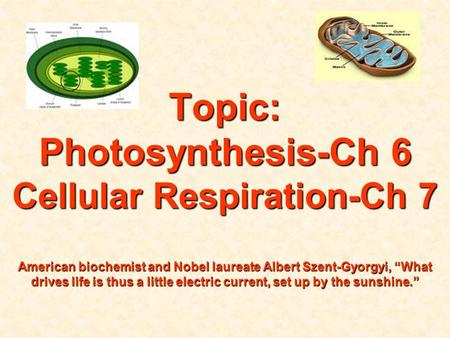 "Topic: Photosynthesis-Ch 6 Cellular Respiration-Ch 7 American biochemist and Nobel laureate Albert Szent-Gyorgyi, ""What drives life is thus a little."