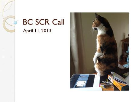 BC SCR Call April 11, 2013. Agenda ? June 7 SQAN/BC NSQIP Meeting SAR Questions or Requests for Site Visits Workflow reports on the ACS Workstation.