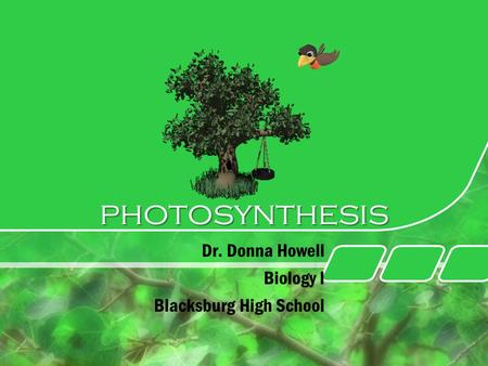 Photosynthesis Dr. Donna Howell Biology I Blacksburg High School.