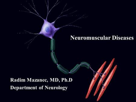 Neuromuscular Diseases Radim Mazanec, MD, Ph.D Department of Neurology.