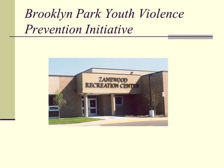 Brooklyn Park Youth Violence Prevention Initiative.