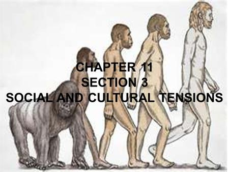 CHAPTER 11 SECTION 3 SOCIAL AND CULTURAL TENSIONS.